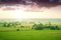 Green Meadow At Dawn Stock Image - 25216991