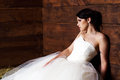 Bride In The Barn Stock Photography - 25254122