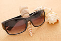 Sunglasses And Shells Stock Images - 25261064