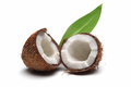 Coconut Royalty Free Stock Images - 25270529