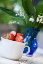 Strawberries Royalty Free Stock Photography - 2531747