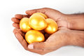 Golden Egg Royalty Free Stock Photography - 25343437