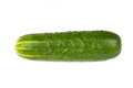 Fresh Green Cucumber Stock Images - 25343594