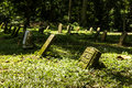 Cemetery In Monkey Forest Royalty Free Stock Photography - 25375917