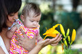 Baby And Yellow Lilly Stock Image - 25409141