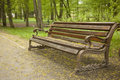 Bench In The Park Stock Photography - 25411322