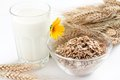 Cereal Flakes And A Glass Of Milk Stock Photo - 25414150