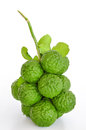Kaffir Lime Royalty Free Stock Image - 25418976