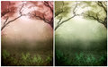 Fantasy Background Stock Photography - 25464172