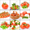 Nine Pictures Of Tomatoes Royalty Free Stock Photography - 25481657
