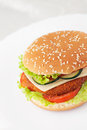 Fried Chicken Or Fish Burger Sandwich Stock Image - 25511621