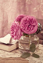 Pink Roses Royalty Free Stock Images - 25527069