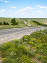 Road To Green Field Royalty Free Stock Images - 25532989