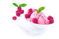 Frozen Raspberry Icecream Dessert Stock Photos - 25562193
