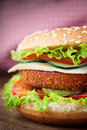 Fried Chicken Or Fish Burger Sandwich Royalty Free Stock Photo - 25565075