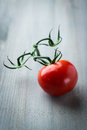 Tomato On The Vine Royalty Free Stock Images - 25574219