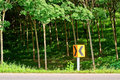 Curve Road Sign Beside The Road Stock Photography - 25576802