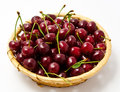 Basket With Ripe Wet Cherry Isolated Royalty Free Stock Photography - 25590317