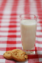 Glass Of Milk And Cookies Royalty Free Stock Image - 2560616