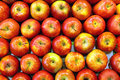 Red Apples Royalty Free Stock Images - 2566579