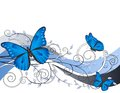 Floral Illustration With Butterflies Stock Photos - 25618643