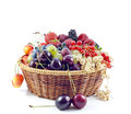 Berries And Fruits In Basket Stock Images - 25661894