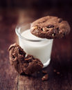 Glass Of Milk And Chocolate Cookies Royalty Free Stock Photos - 25678708