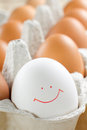 Brown And One White Chicken Eggs In The Container Royalty Free Stock Image - 25681476