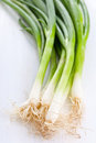Spring Onions Stock Image - 25703511