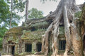 Ta Prohm Royalty Free Stock Image - 25737586