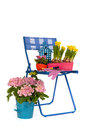Garden Chair Royalty Free Stock Photography - 25750627