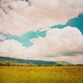 Field And Clouds Royalty Free Stock Photo - 25764435