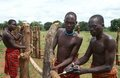 Karamojong Cattle Herders Constructing A Fence. Royalty Free Stock Images - 25774429