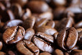 Coffee Beans Close Up Stock Photo - 25790970