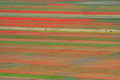 Coloured Fields Royalty Free Stock Image - 25827686