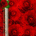 Background With Roses For The Cover Des Royalty Free Stock Photos - 25859058