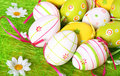 Easter Eggs Royalty Free Stock Photography - 2597547