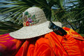 Sun Hat And Palm Tree Stock Photo - 2598570