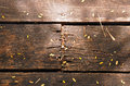 Decaying Wooden Planks With Nails Royalty Free Stock Photography - 25903857