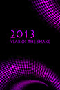2013 New Year Royalty Free Stock Photography - 25912677