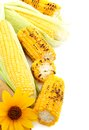 Flower,grilled Corn And Fresh Cobs. Royalty Free Stock Images - 25916519
