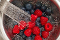 Fresh Berries Stock Images - 25921184