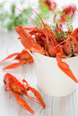 Crayfish Royalty Free Stock Photography - 25927387