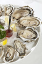 Oysters Stock Photo - 25929730