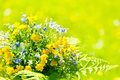 Bouquet Of Wildflowers Royalty Free Stock Image - 25934006