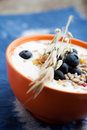 Yogurt With Blueberries Royalty Free Stock Images - 25948339