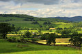 Mountain Hay Fields, Cumbria Stock Images - 25951304