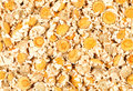 Dried Chamomile Flowers Royalty Free Stock Images - 25983589