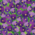 Seamless Pattern With Violet  Flowers Stock Image - 25993421