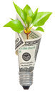 Light Bulb With Dollar And Green Sprout Stock Photo - 26084170
